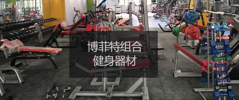 组合商用健身房器材