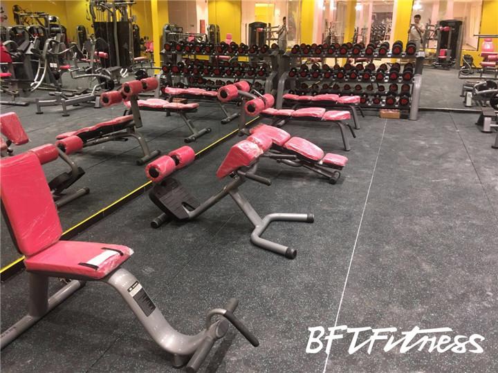 沙特客户女子健身房 自由力量器材