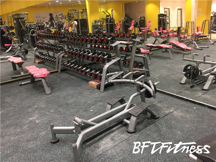 沙特客户女子健身房器械